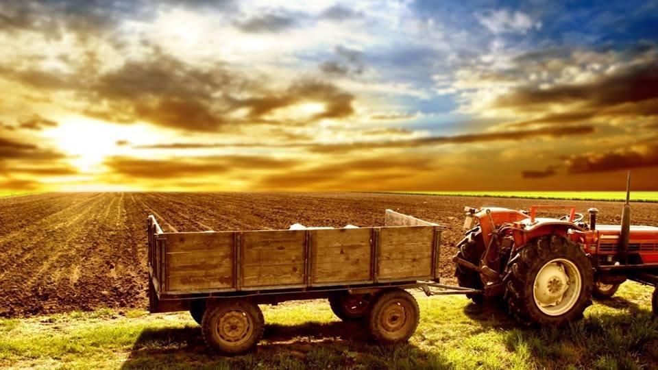 Ferme de evitat in Danemarca - Farms to avoid in Denmark